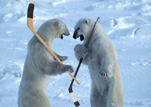 hockey_polar_bears-31