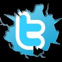 Follow wnyrki on twitter